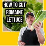 image of cut lettuce