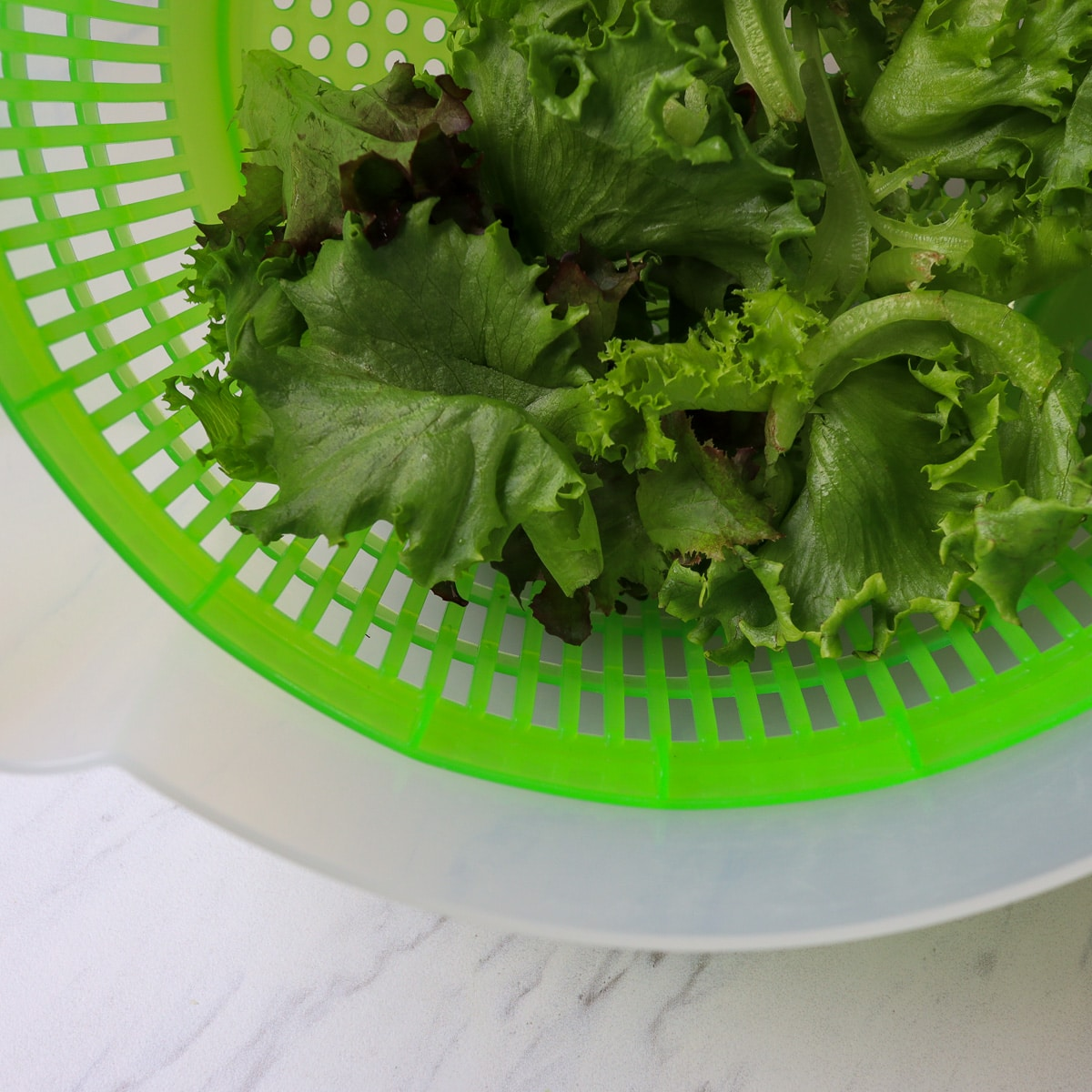 salad just washed in a spinner