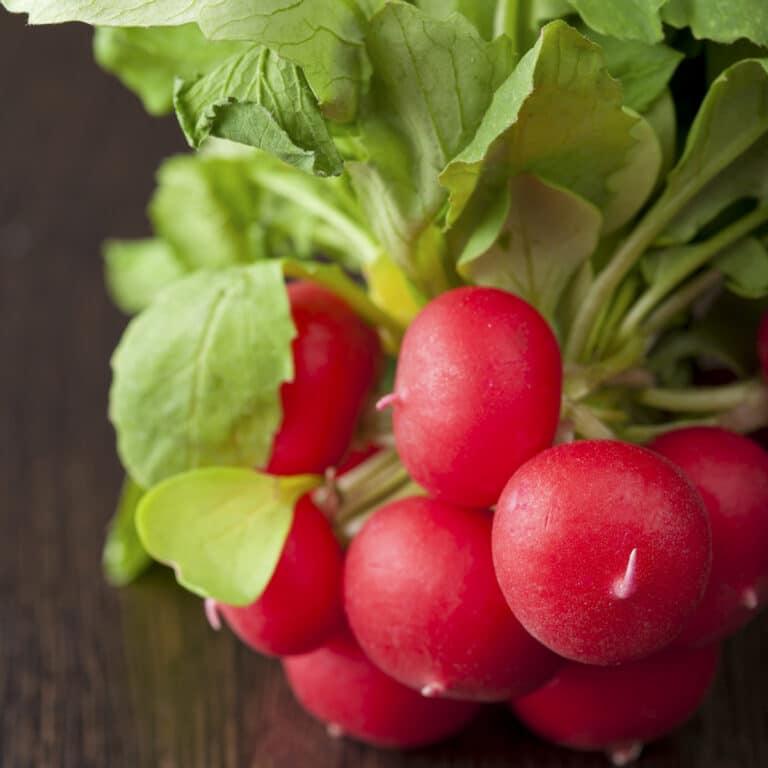 Do radishes go bad?