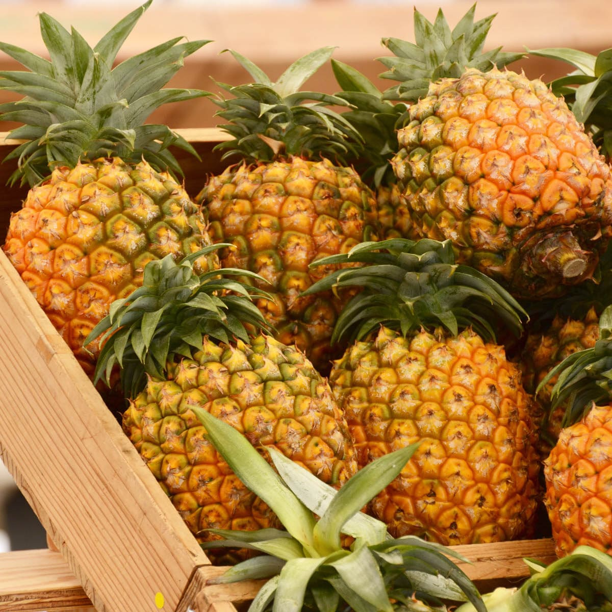 Crate full of pineapples at a store
