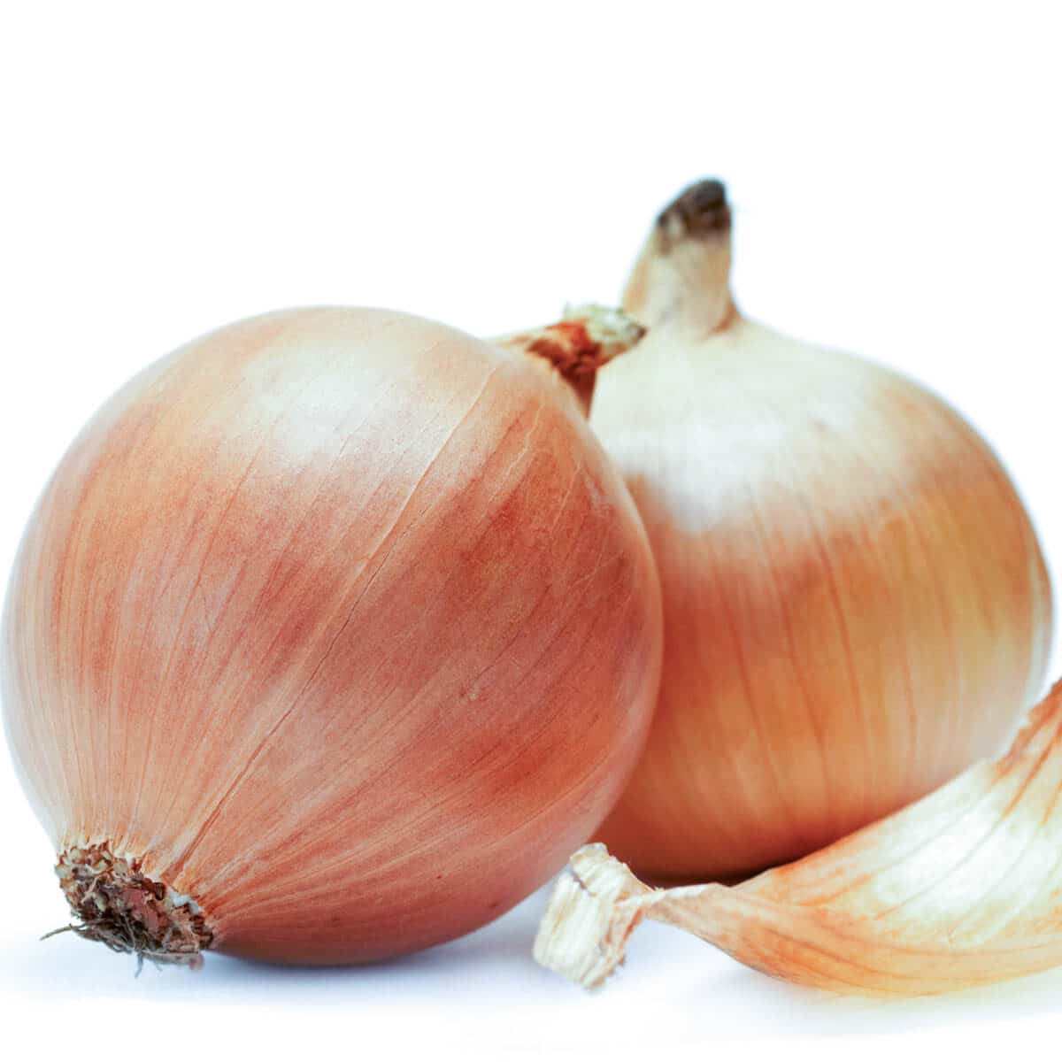 2 white onions with an onion skin laying next to them