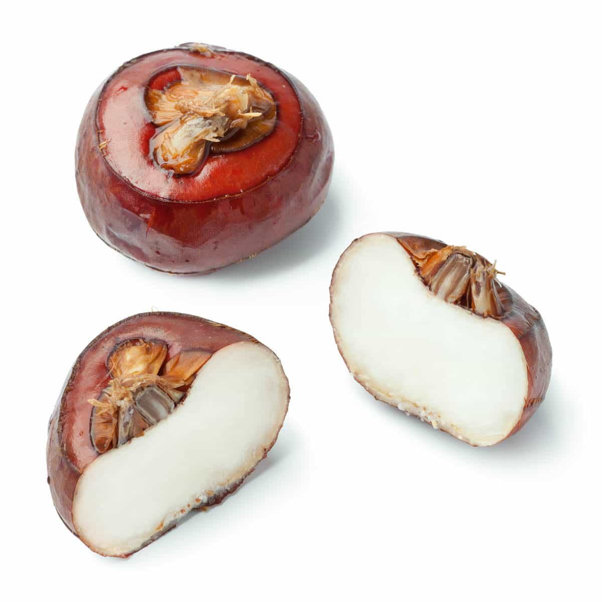2 water chestnuts, one whole, one is cut in half.